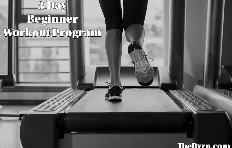 3 Day Beginner Workout Program