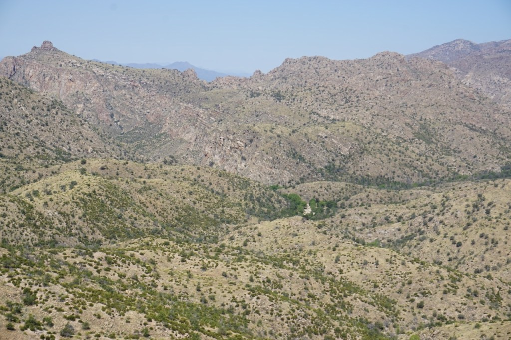 DSLooking for a day trip from Tucson? Mt. Lemmon is a great option.