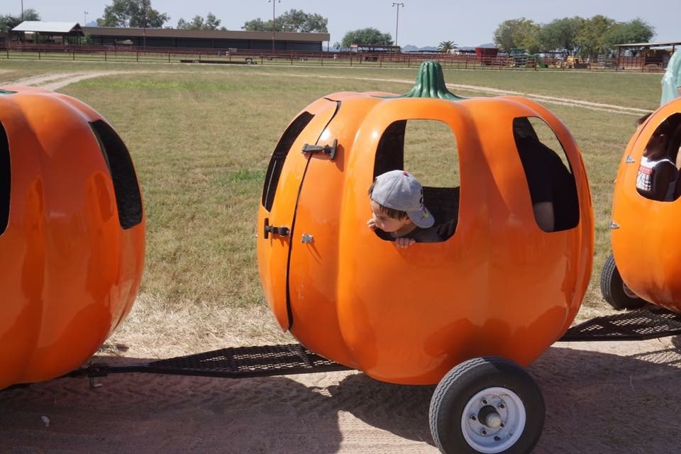 The pumpkin train ride is another reason why the Marana Pumpkin Patch is kid friendly.