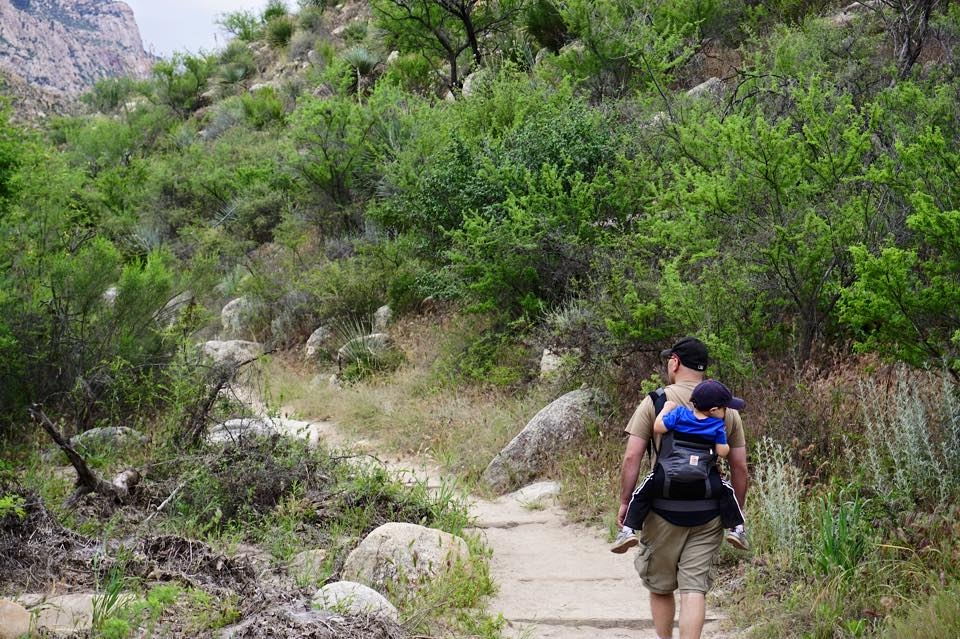 The Canyon Loop Trail at Catalina State Park is a favorite hike of ours.