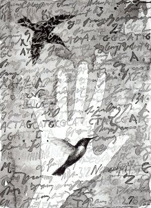 Bird in the Hand by Suzanne Stryk