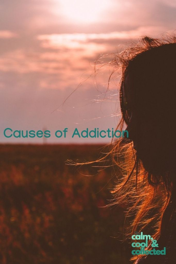 4 Underlying Causes of Addiction pin 2