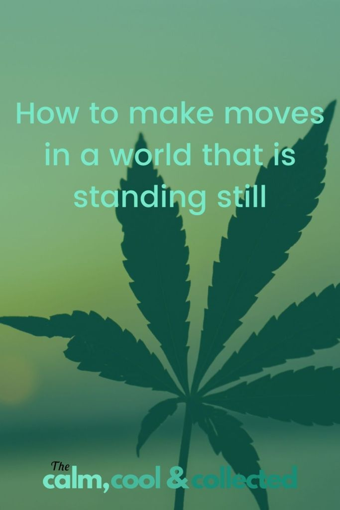 How to make moves in a world that is standing still