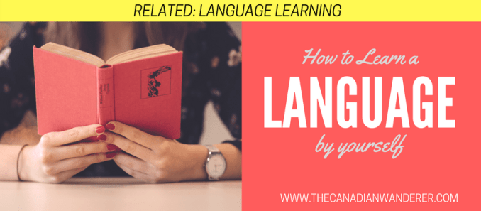 How to Learn a Language By Yourself