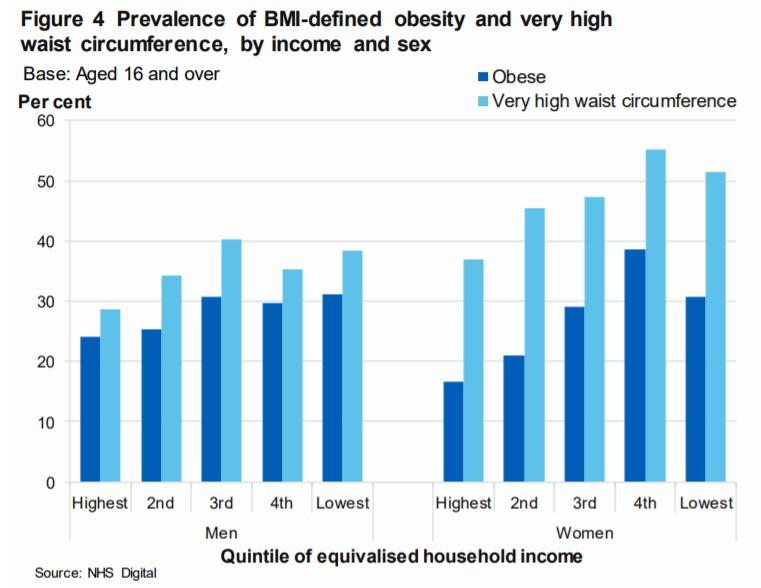 adult obesity