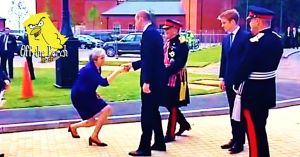 Theresa May curtseys to Prince William Off The Perch