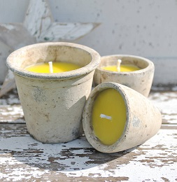 Effectiveness of Citronella Candles