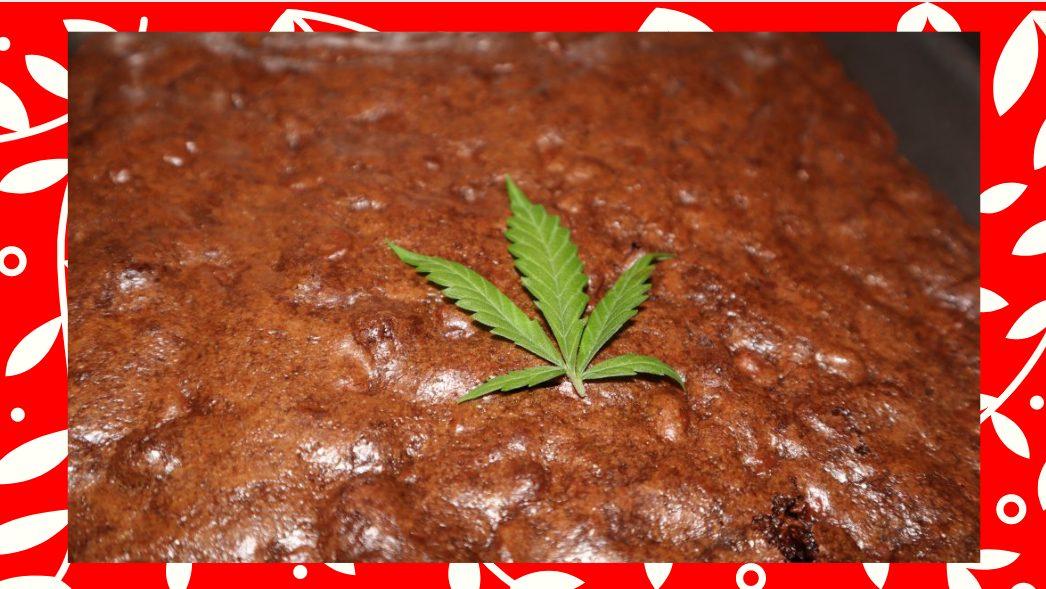 pot brownies recipe, the worlds best weed brownie recipe.
