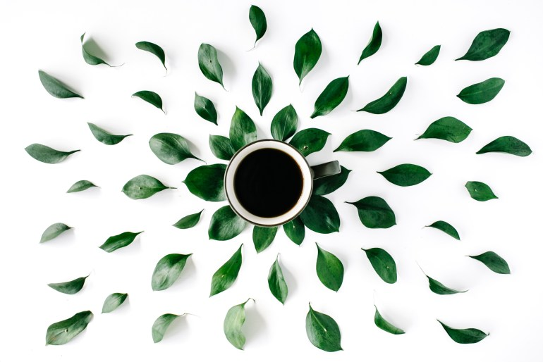 weed coffee with green leaves surrounding it.