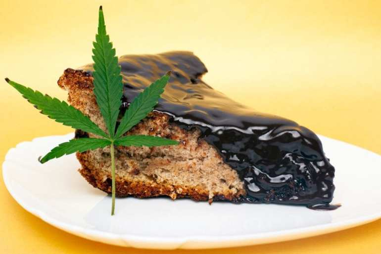 "Space cake on a white plate. A weed leaf lies against the piece of cake. ""class ="" wp-image-13753 ""data-recalc-dims ="" 1 ""/>   <h2> Can you buy Space Cake? </h2> <p> You can buy Space Cake in places and regions where recreational cannabis is legal. Space Cake has been popular in places like Amsterdam for decades and has grown in recent years in the United States and Canada as more laws on the sale and consumption of cannabis foods have been lifted. </p> <p> In our opinion, baking your own space cakes directly at home is more reliable, safer and cheaper! You can make them with the specific potency you want, the type of cake batter you like, and save money! </p> <p> If you have remnants of your plants, indigenous buds, or just extra cannabis you'd like to put in a cake, we have all the information you need. The first step is to make an activated ingredient like cannabis butter, cannabis oil or cannabis milk. Once you have the activated ingredient, you can add it to any cake recipe that requires it, and you will get a space cake in no time! </p> <p> If you want to make your own activated ingredient at home to make a space cake and don't know where to start, here are some links: </p> <p> Click here to learn how to make cannabis butter! </p> <p> Click here to learn how to make cannabis oil! </p> <p> Click here to learn how to make cannabis milk! </p> <h2> Space Cake Strain </h2> <p> When cannabis enthusiasts talk about space cakes, they usually refer to cannabis foods! But there is also a cannabis strain called Space Cake! </p> <p> The Space Cake strain is a rare indica-dominant hybrid strain (approximately 70% indica and 30% sativa). The strain was created by crossing the famous Girl Scout Cookies with Snow Lotus strains. </p> </pre> </pre> 					</div>