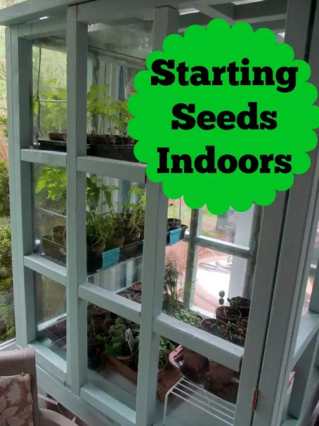 Start your garden off right by starting your seeds indoors. It's easier than you think!