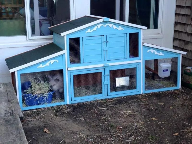 hutches resized photo large productaddl rabbit prevue new zoom product products additional hutch pet