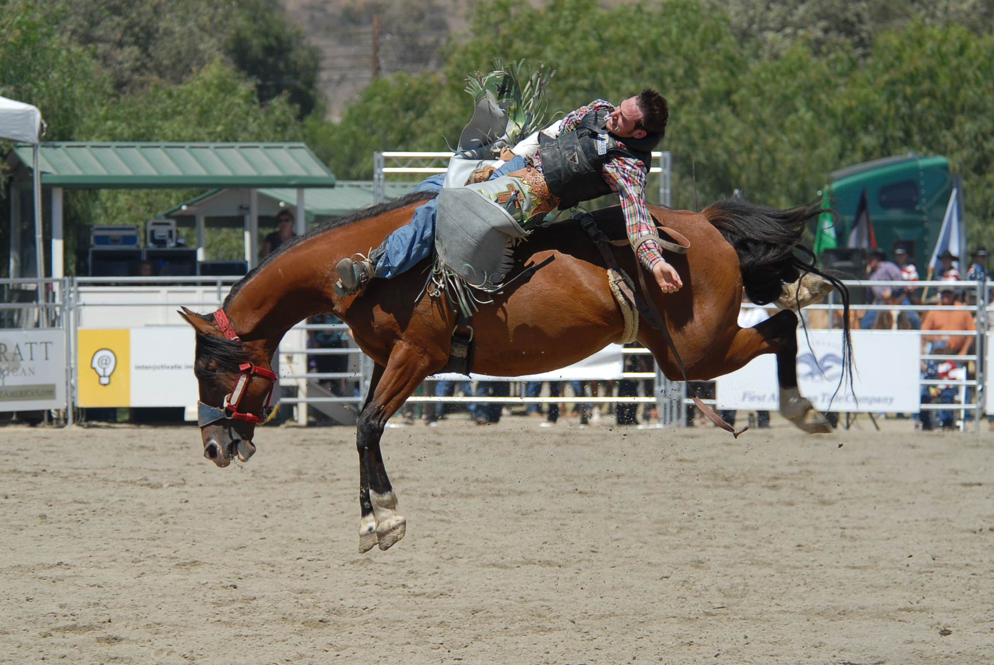 Rodeo Week Returns For Second Ride The Capistrano Dispatch