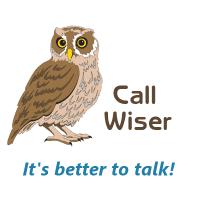 Call Wiser logo