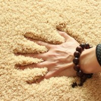 Textured carpets and rugs: need to know | Carpet Giant