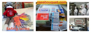Summer safety posts for first aid supplies, science activities, home safety, and emergency plan for home or school. Zika virus mosquito repellants included.