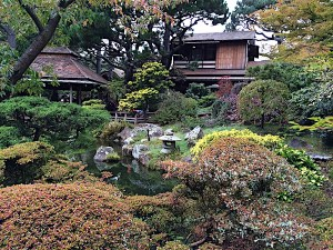 san-francisco-japanese-tea-garden