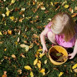 Leaf Hunt + Autumn Sun Catcher