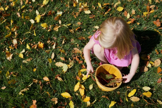 Toddler Leaf Hunt Fall Leaves