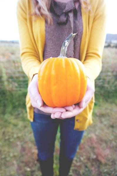 Pumpkin Patch 2 - 08