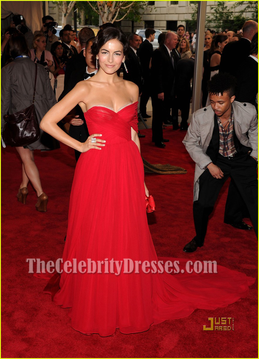 Camilla Belle Strapless Chiffon Prom Gown Red Carpet Evening Dress 2010 MET Ball