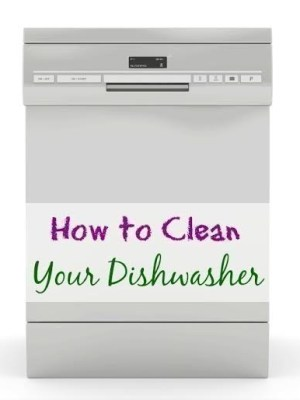 How to Clean your Dishwasher | 5 Simple Steps