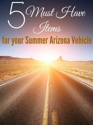 5 Must Have Items to Carry in your Summer Arizona Vehicle