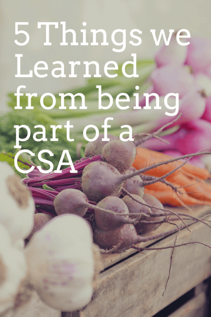 Looking to make some changes to your diet and health? A CSA might be the way to go. Here are 5 things we have learned from being part of our local CSA.