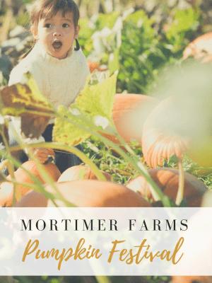 Mortimer Farms Pumpkin Festival