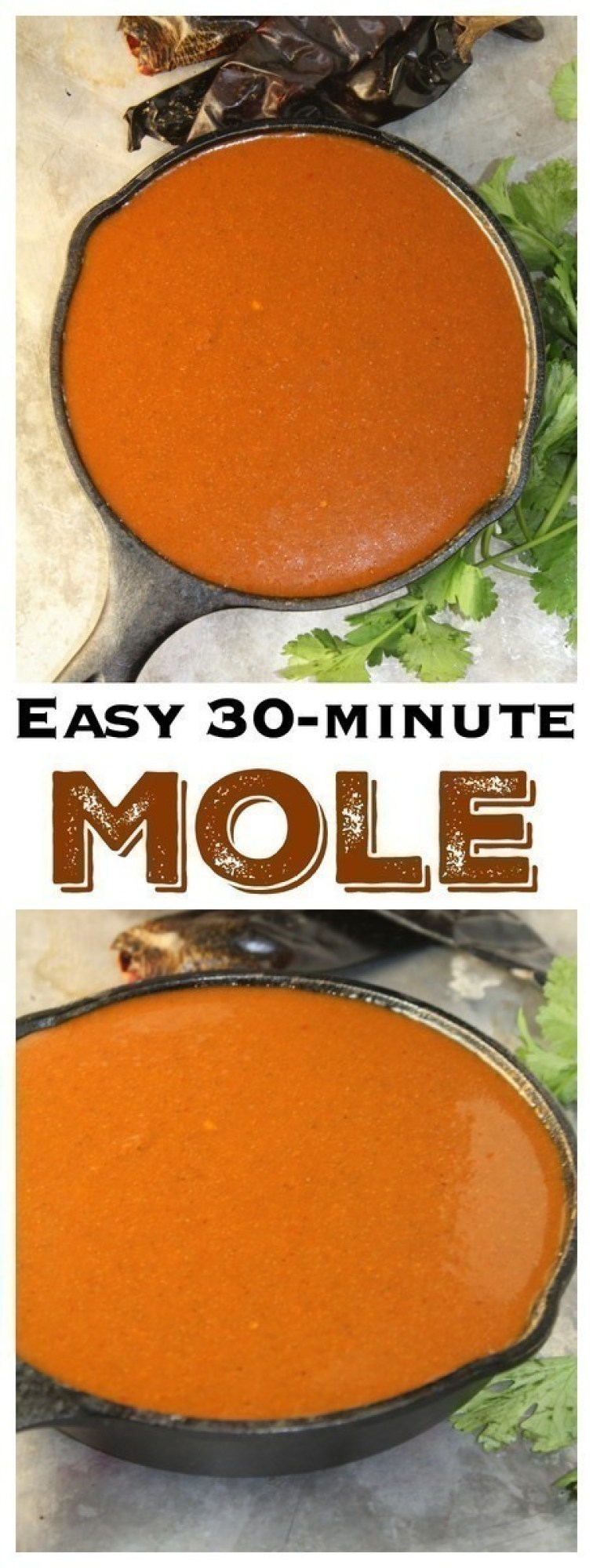 In Mexico, moles are reserved for special occasions and big parties, and can take hours to make with a long list of ingredients. This mole can be put together in just 30 minutes or less.