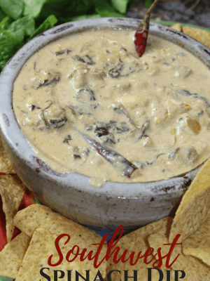 Instant Pot Spicy Southwest Spinach Dip