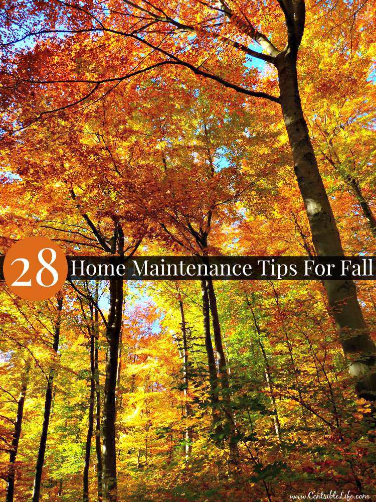 Fall Home Maintenance Tips 28 home maintenance tips for fall