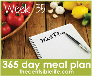 year long meal plan