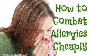 How to Combat Allergies Cheaply