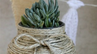 Natural Hemp-Wrapped Jar with Succulents