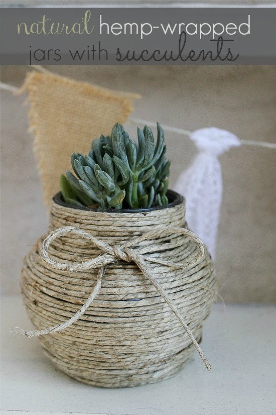 Natural hemp wrapped jar with succulents