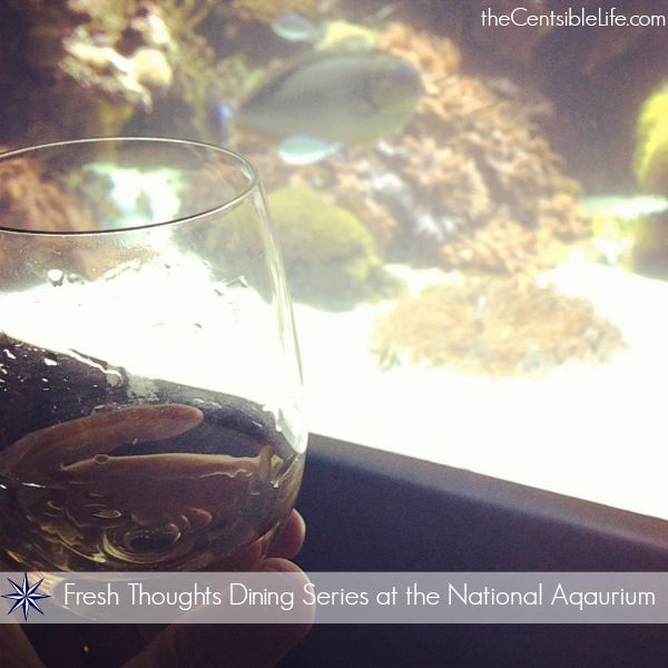 Wine and Dinner at the Aquarium