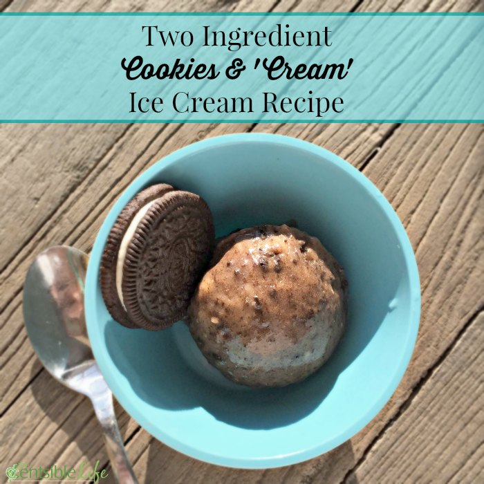 Homemade Cookies and 'cream' ice cream