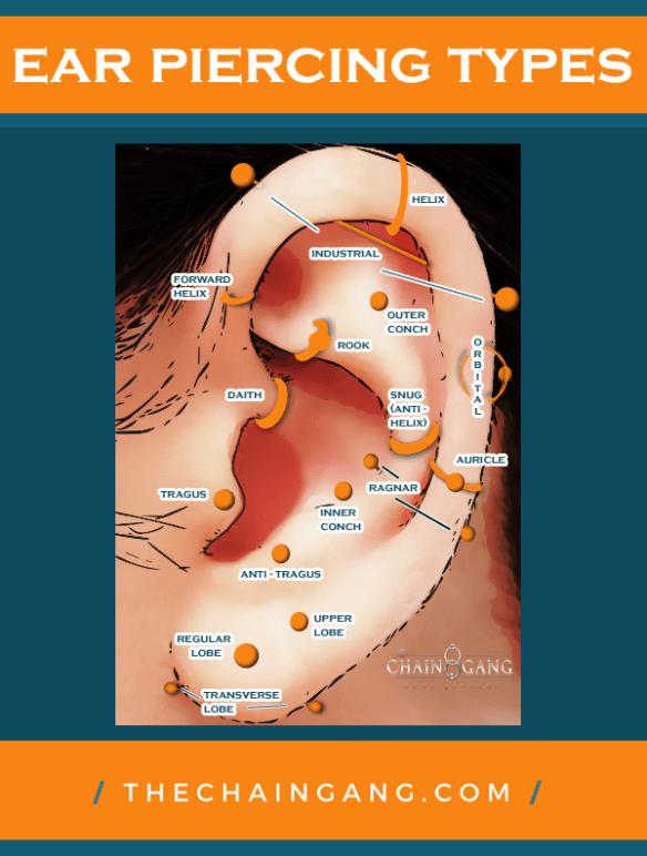 Ear Piercing Types