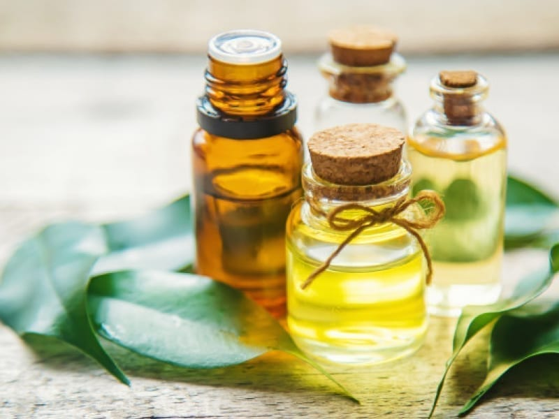Get Rid Of Oily Scalp With Tea Tree Oil