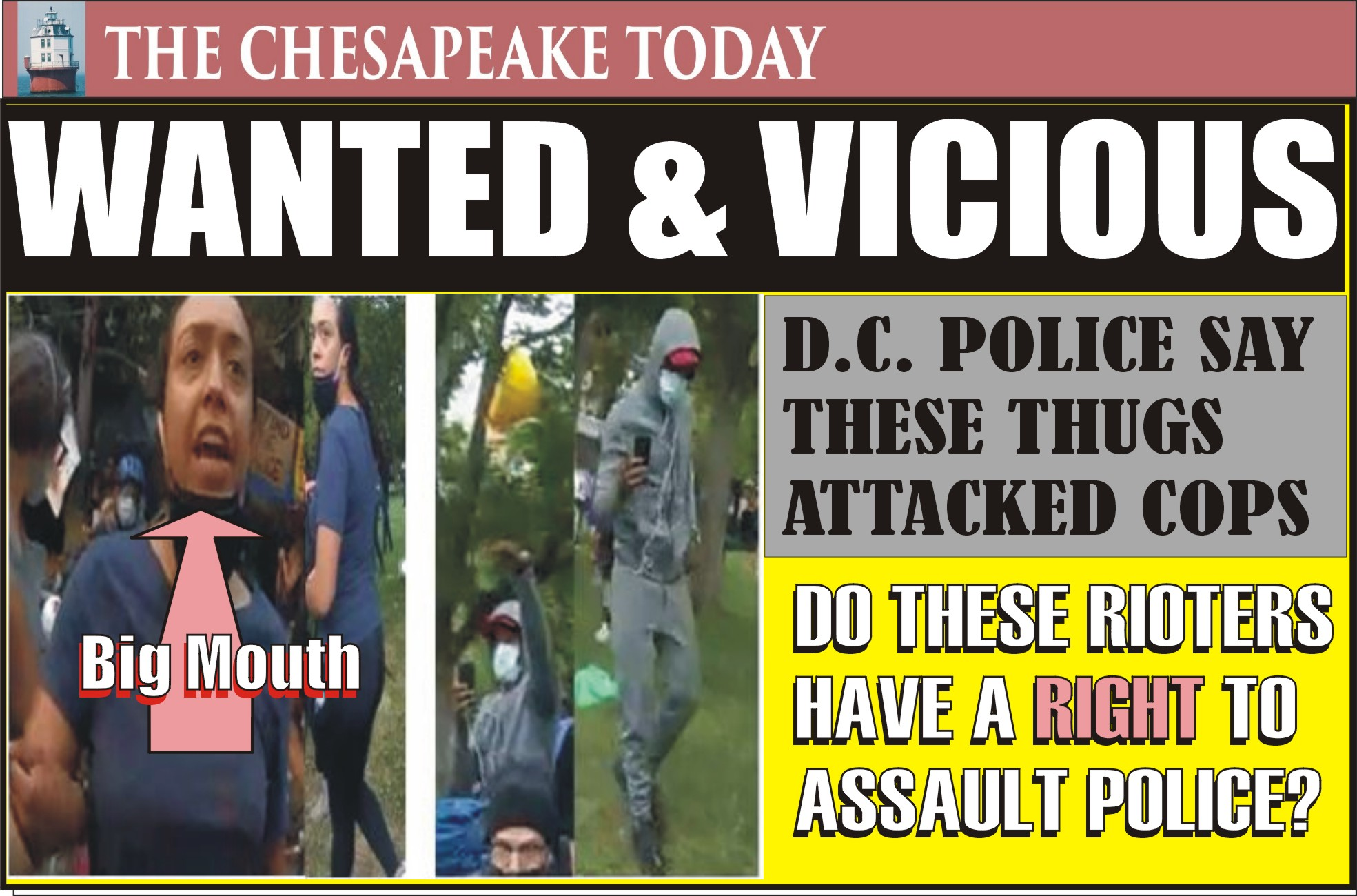 RIOTERS in DC: District Police seek ID on these miscreants who assaulted police officers in the area of Lafayette Square