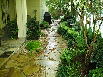 water saving landscaping and reduce