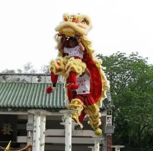lion-dance-closeup