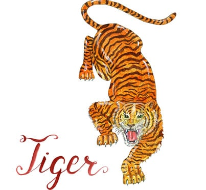 Year of the Tiger –  2020 Horoscope & Feng shui Forecast