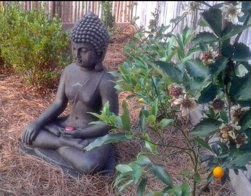 large buddha outdoor statue