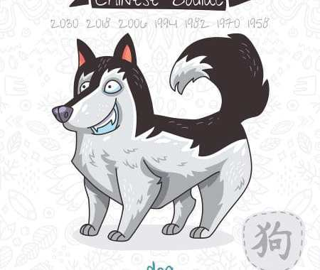 Dog 2019 Chinese Horoscope & Feng Shui Forecast