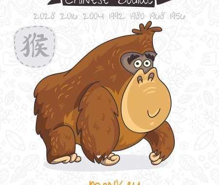 Monkey 2019 Chinese Horoscope & Feng Shui Forecast