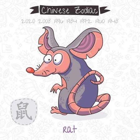 year of the rat 2019 - chinese horoscope