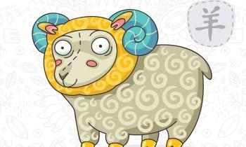 goat (sheep) chinese horoscope 2019