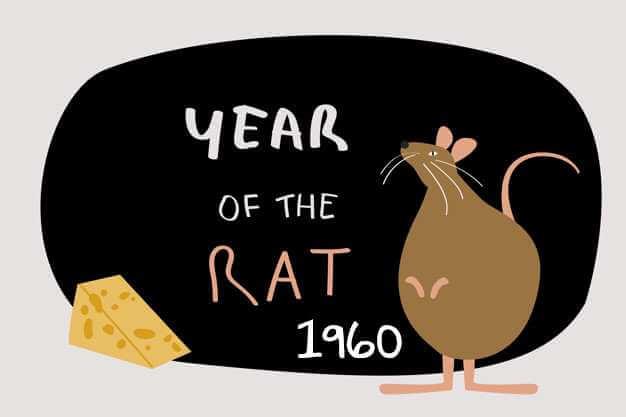 1960 - Metal Rat